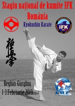 Stagiu National de Kumite